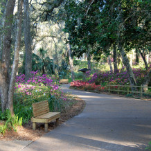 Park Trails, Swimming<br />and Picnic Areas