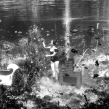 Mermaid at  Rainbow Springs